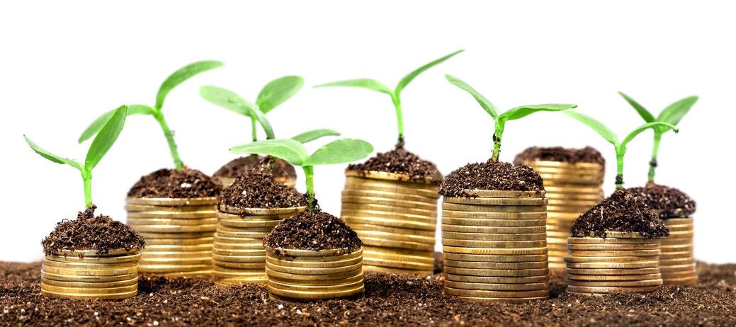 Wertsteigerung von Immobilien: Weshalb sich ein Hauskauf lohnt!
